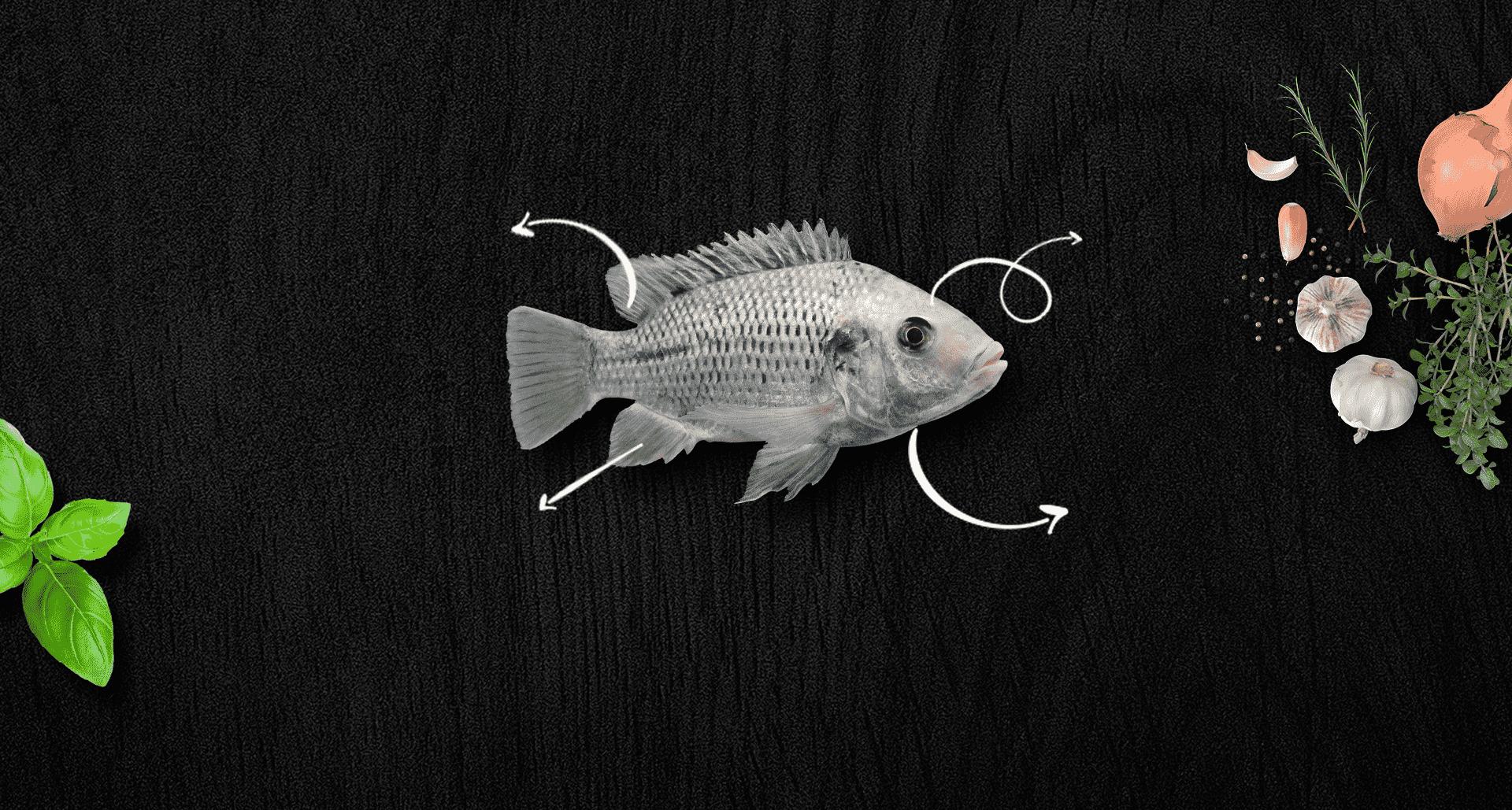 דג אמנון